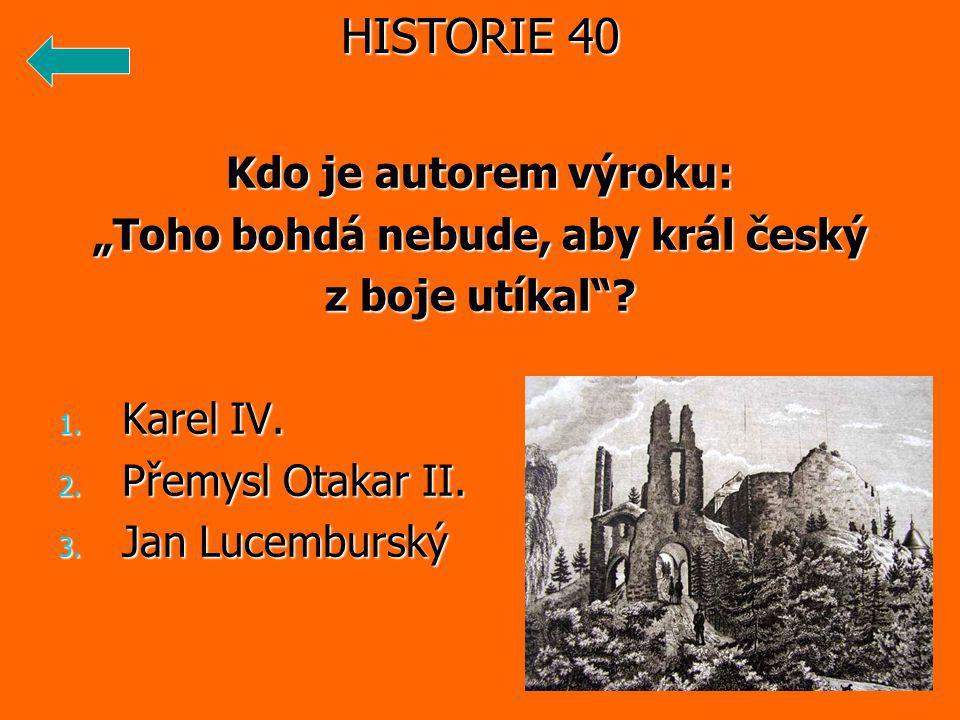 """Kdo je autorem výroku: """"Toho bohdá nebude, aby král český z boje utíkal ."""