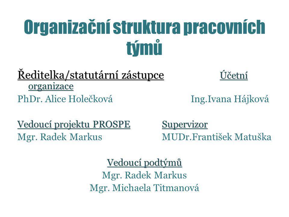 Organizační struktura pracovních týmů Ředitelka/statutární zástupce Účetní organizace PhDr.
