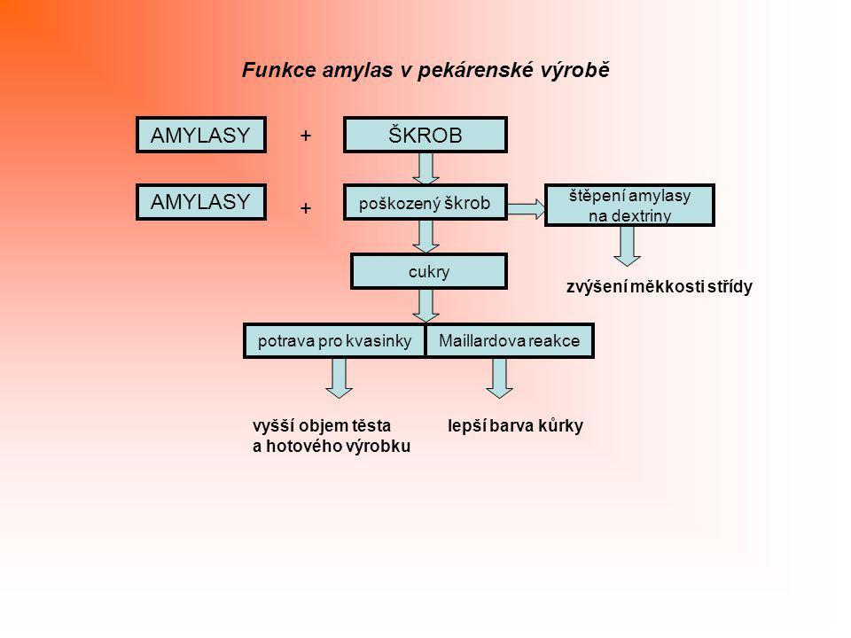AMYLASYŠKROB + Funkce amylas v pekárenské výrobě poškozený škrob AMYLASY + štěpení amylasy na dextriny cukry zvýšení měkkosti střídy potrava pro kvasi
