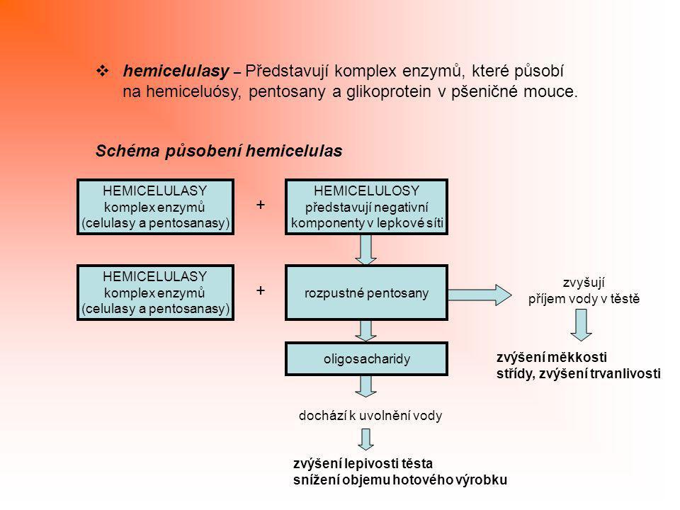  hemicelulasy – Představují komplex enzymů, které působí na hemiceluósy, pentosany a glikoprotein v pšeničné mouce. Schéma působení hemicelulas HEMIC