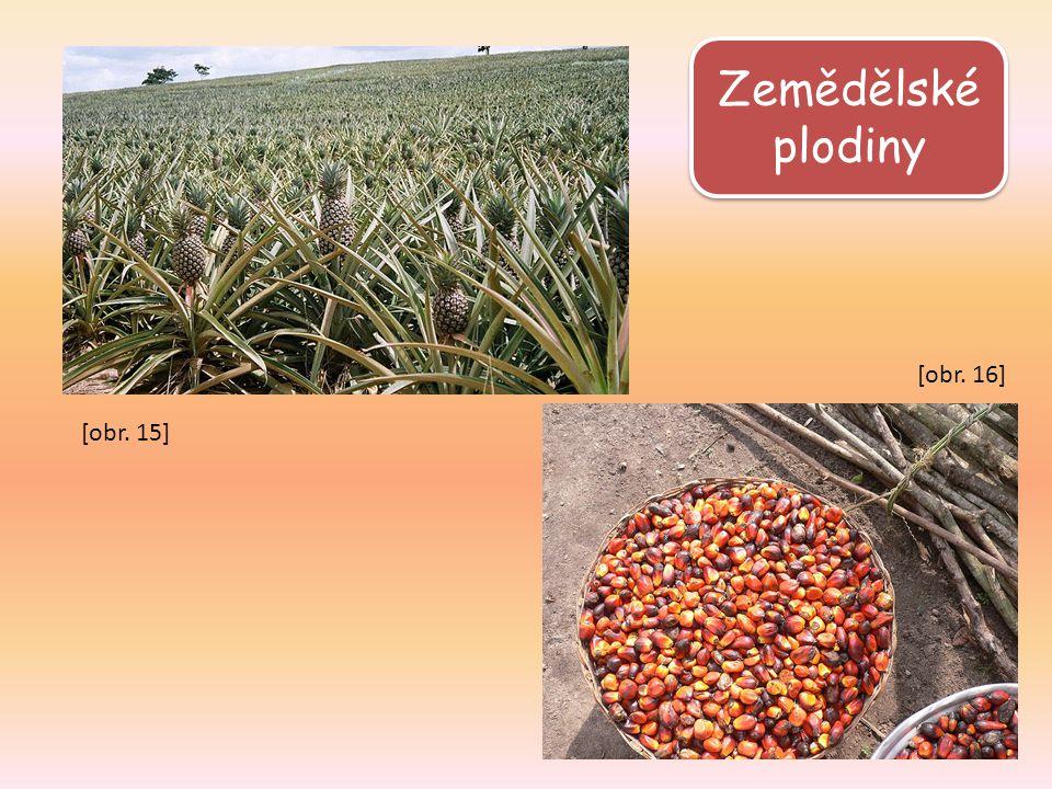 Zemědělské plodiny [obr. 15] [obr. 16]