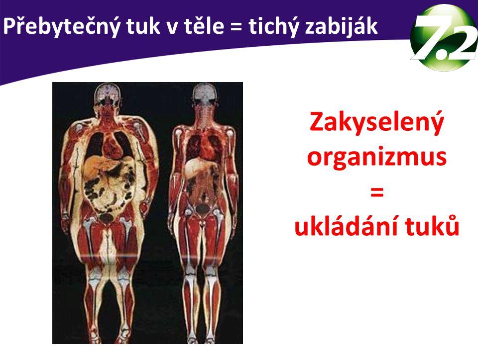 Přebytečný tuk v těle = tichý zabiják Zakyselený organizmus = ukládání tuků