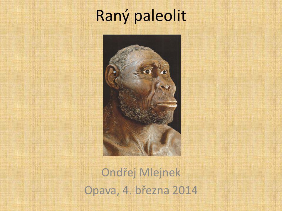 Oldowan První nástroje vyrobené lidmi byly nalezeny ve východní Africe (2,6-1,7 mil).