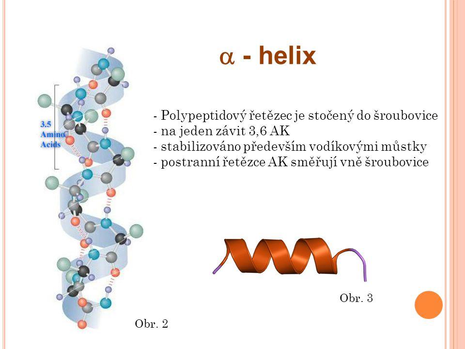  - helix - Polypeptidový řetězec je stočený do šroubovice - na jeden závit 3,6 AK - stabilizováno především vodíkovými můstky - postranní řetězce AK směřují vně šroubovice Obr.