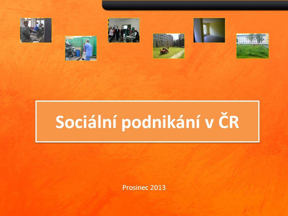 Sociální podnikání v ČR Prosinec 2013
