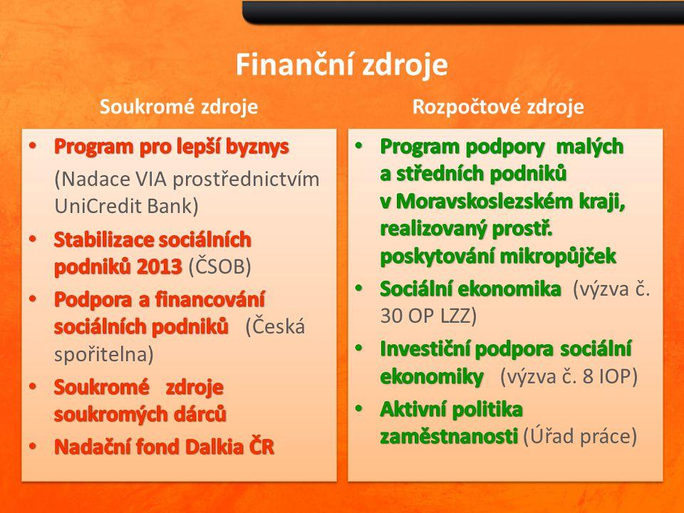 Finanční zdroje Soukromé zdroje Rozpočtové zdroje