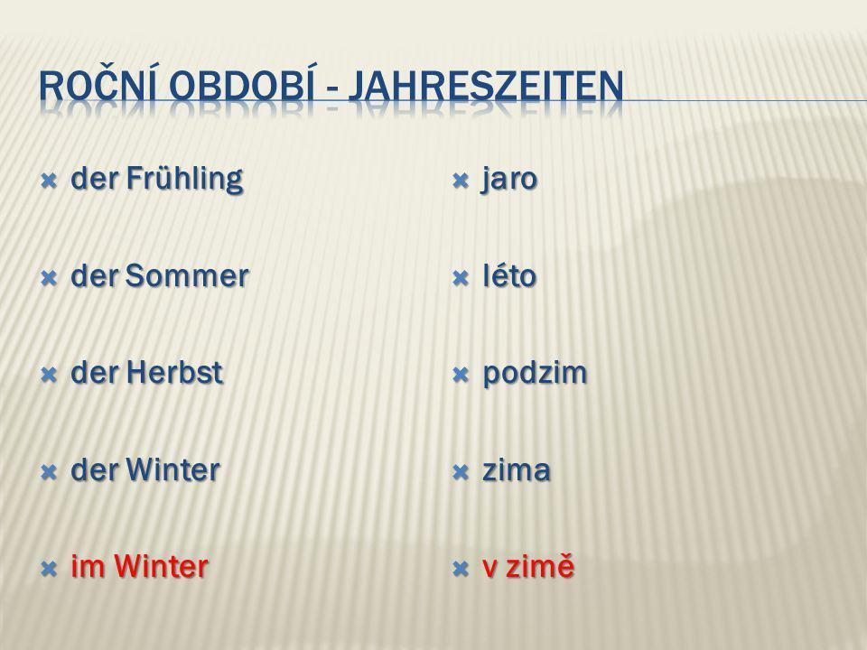  der Frühling  der Sommer  der Herbst  der Winter  im Winter  jaro  léto  podzim  zima  v zimě