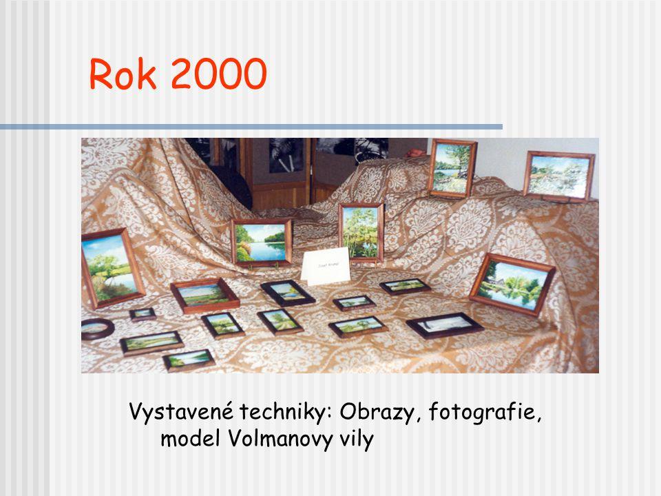 Vystavené techniky: Obrazy, fotografie, model Volmanovy vily