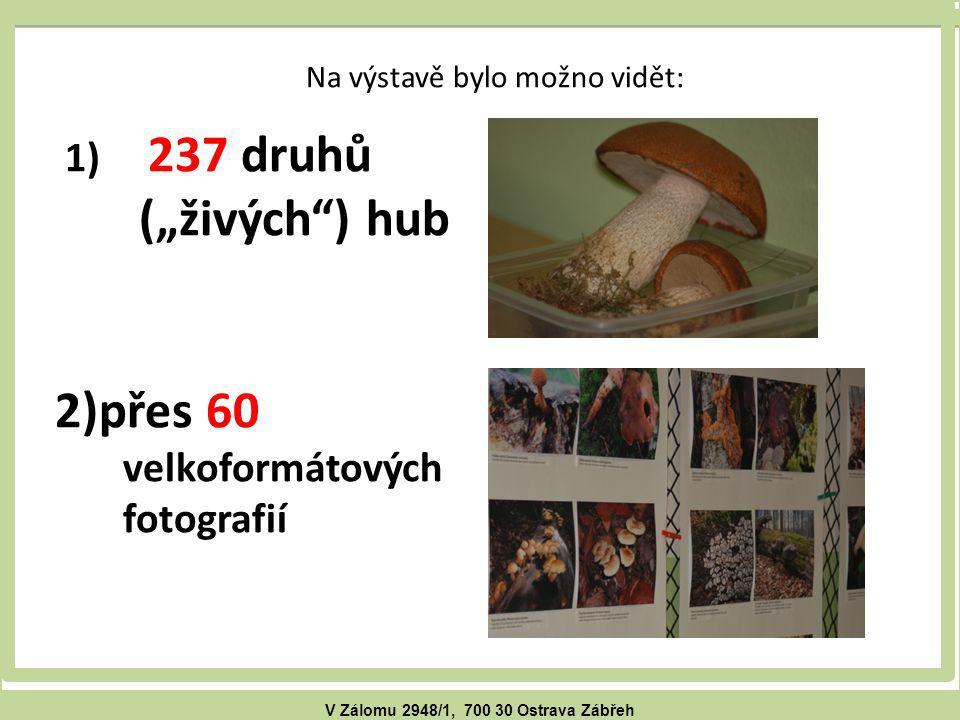"""V Zálomu 2948/1, 700 30 Ostrava Zábřeh Na výstavě bylo možno vidět: 1) 237 druhů (""""živých ) hub 2)přes 60 velkoformátových fotografií"""
