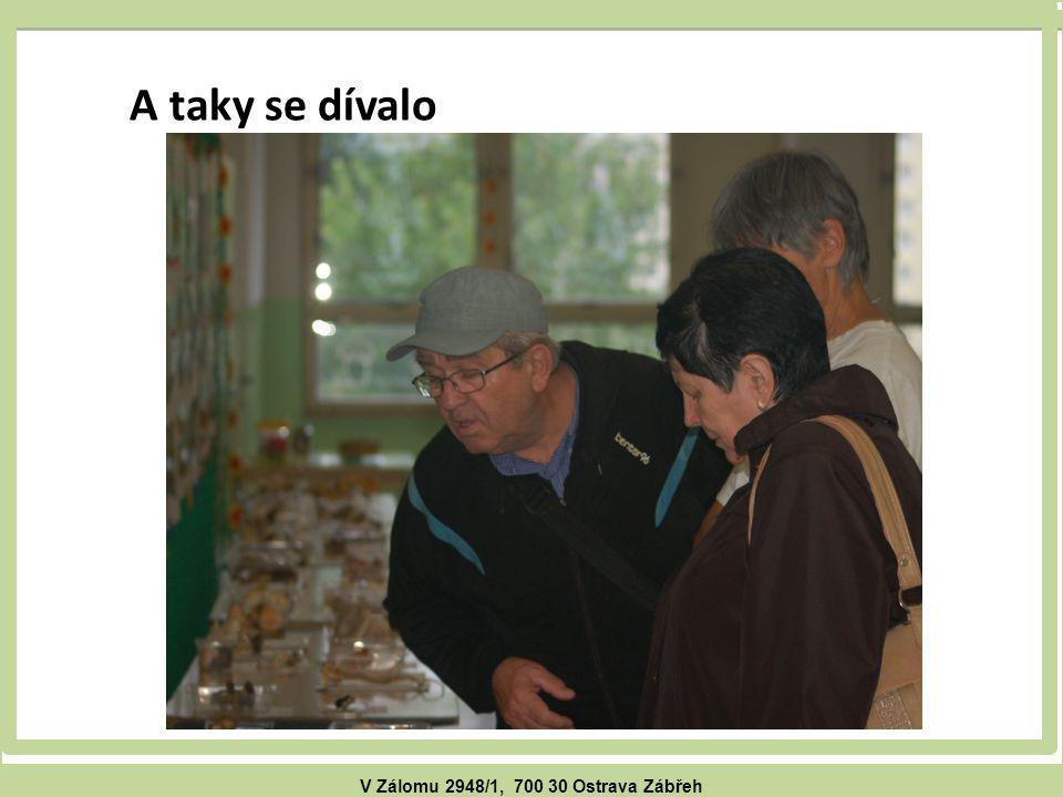 V Zálomu 2948/1, 700 30 Ostrava Zábřeh A taky se dívalo