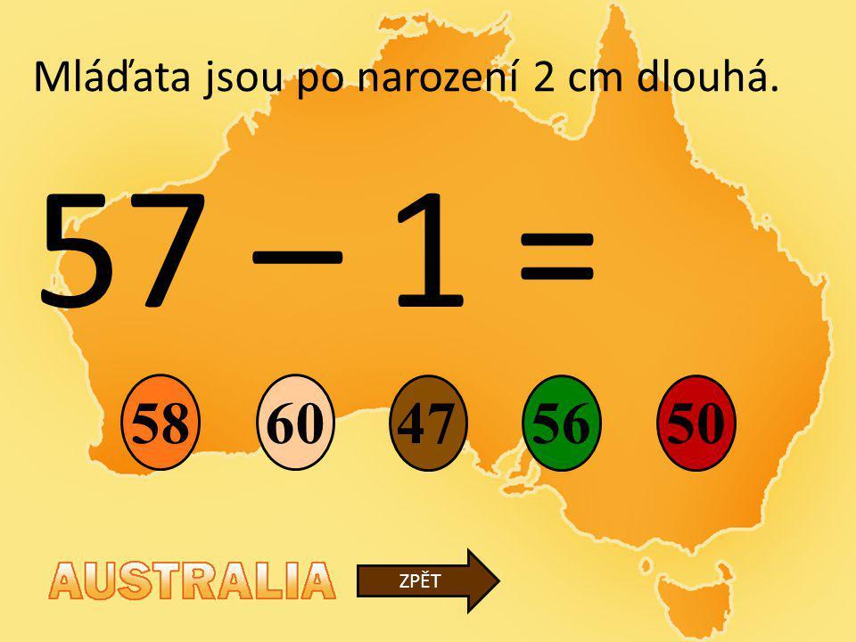 57 – 1 = 47 6058 50 ZPĚT Mláďata jsou po narození 2 cm dlouhá. 56