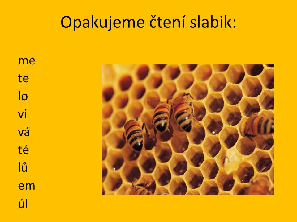 Český jazyk 1.