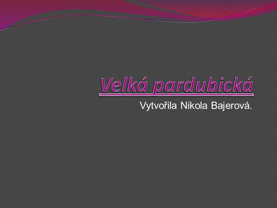 Vytvořila Nikola Bajerová.
