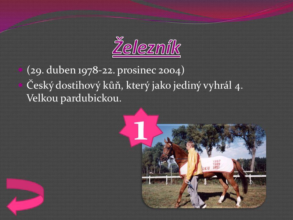 (29.duben 1978-22. prosinec 2004) Český dostihový kůň, který jako jediný vyhrál 4.