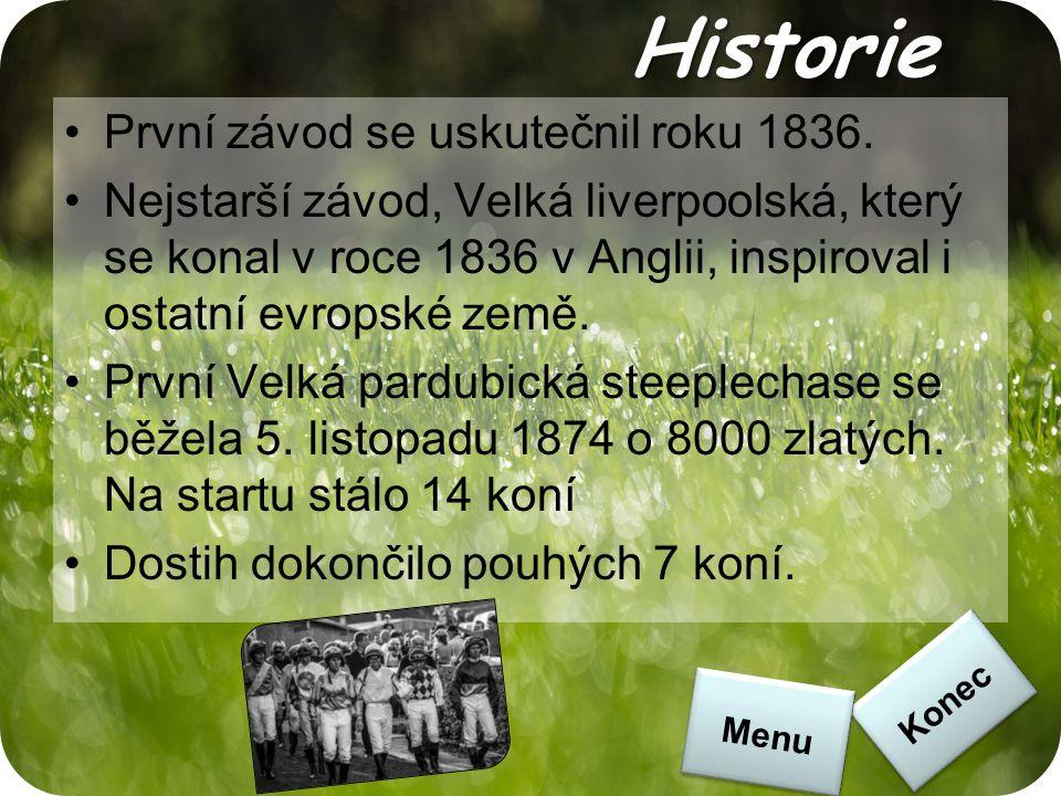 Historie První závod se uskutečnil roku 1836. Nejstarší závod, Velká liverpoolská, který se konal v roce 1836 v Anglii, inspiroval i ostatní evropské