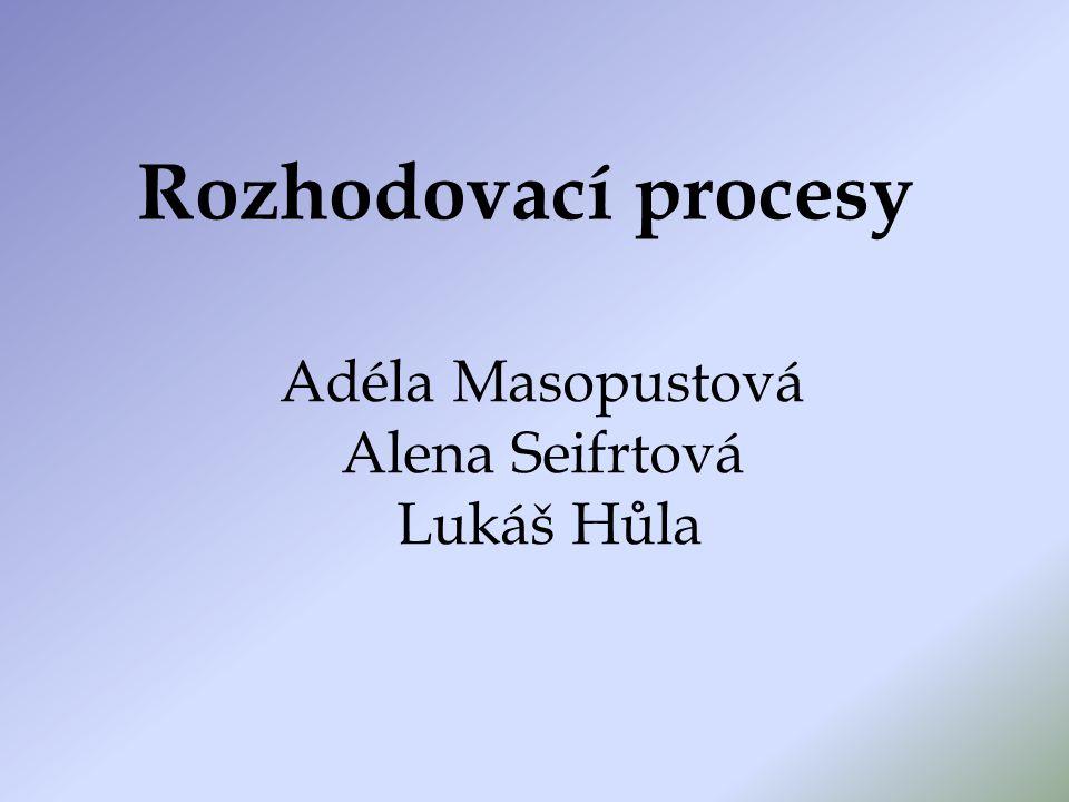 Rozhodovací procesy Adéla Masopustová Alena Seifrtová Lukáš Hůla