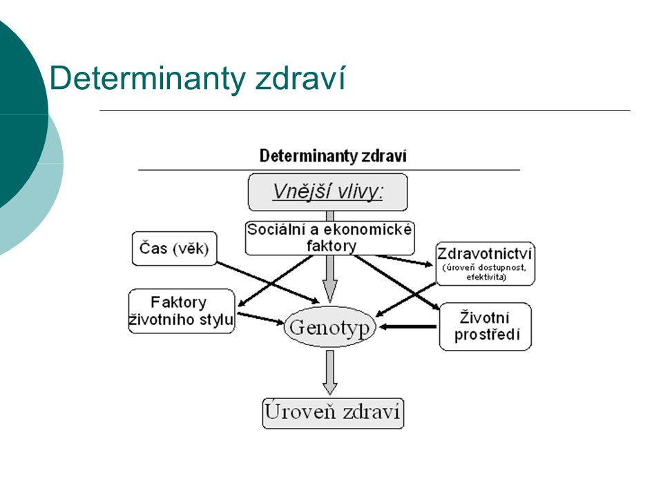 Determinanty zdraví