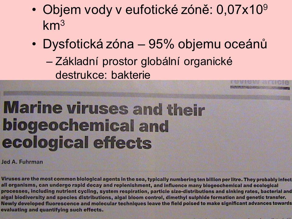 Objem vody v eufotické zóně: 0,07x10 9 km 3 Dysfotická zóna – 95% objemu oceánů –Základní prostor globální organické destrukce: bakterie –Efekt virů,