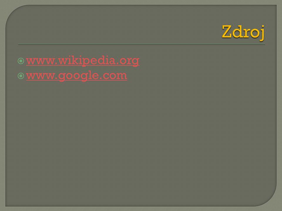  www.wikipedia.org www.wikipedia.org  www.google.com www.google.com