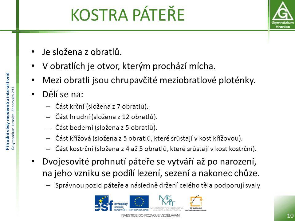 Přírodní vědy moderně a interaktivně ©Gymnázium Hranice, Zborovská 293 KOSTRA PÁTEŘE Je složena z obratlů.