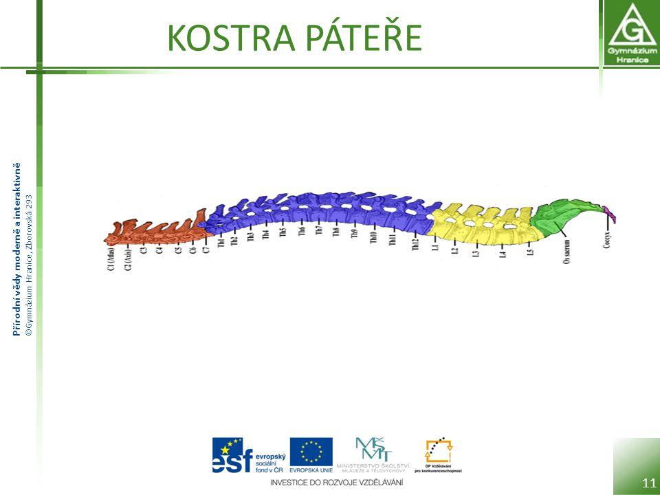 Přírodní vědy moderně a interaktivně ©Gymnázium Hranice, Zborovská 293 KOSTRA PÁTEŘE 11
