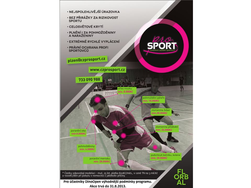 ProSport  Sponzoring  Ochrana sportovce-ztráta sponzorů  Udržení sponzora - výsledky