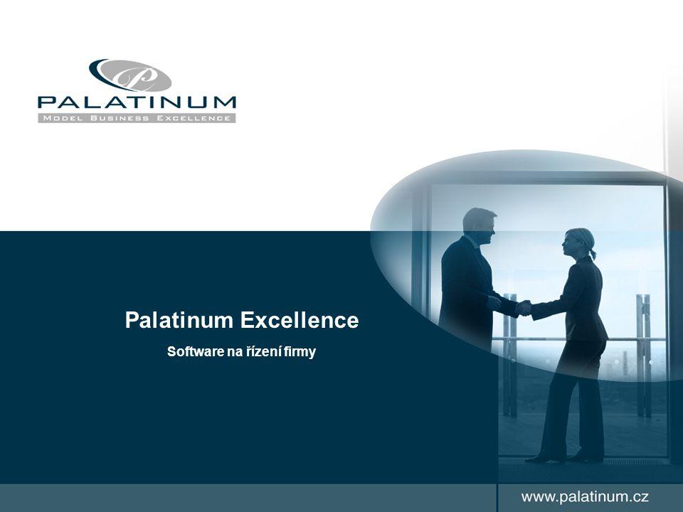 Palatinum Excellence Software na řízení firmy