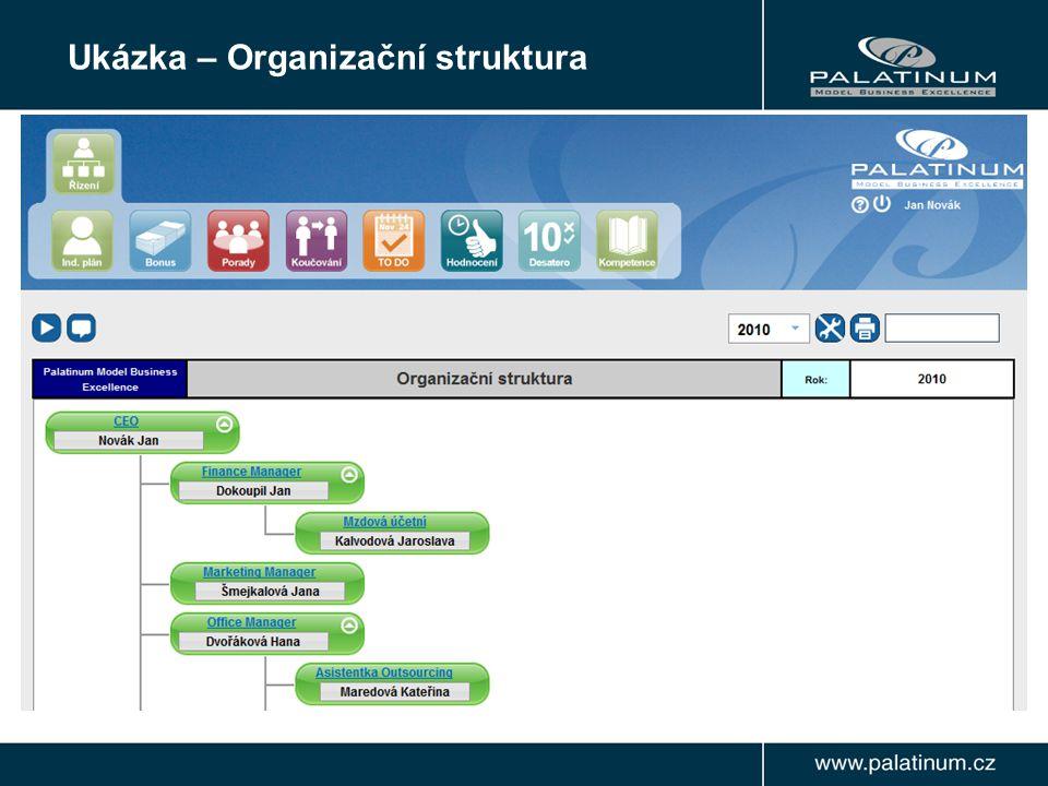 Ukázka – Organizační struktura
