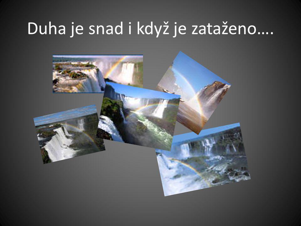 Fauna Okolo vodopádů je mnoho druhů živočichů, především díky vhkému vzduchu a rezervaci.