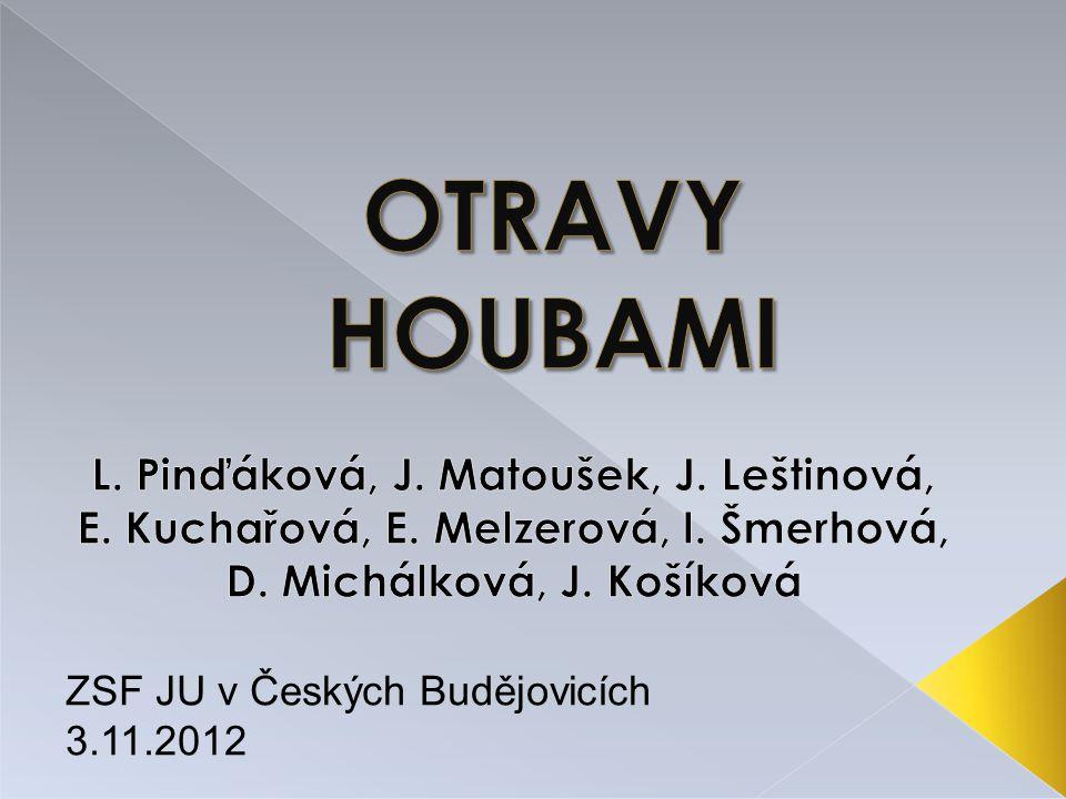 ZSF JU v Českých Budějovicích 3.11.2012