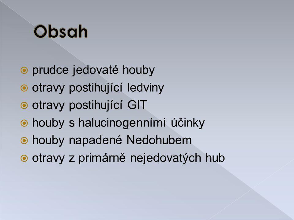 Jana Leštinová Eliška Kuchařová