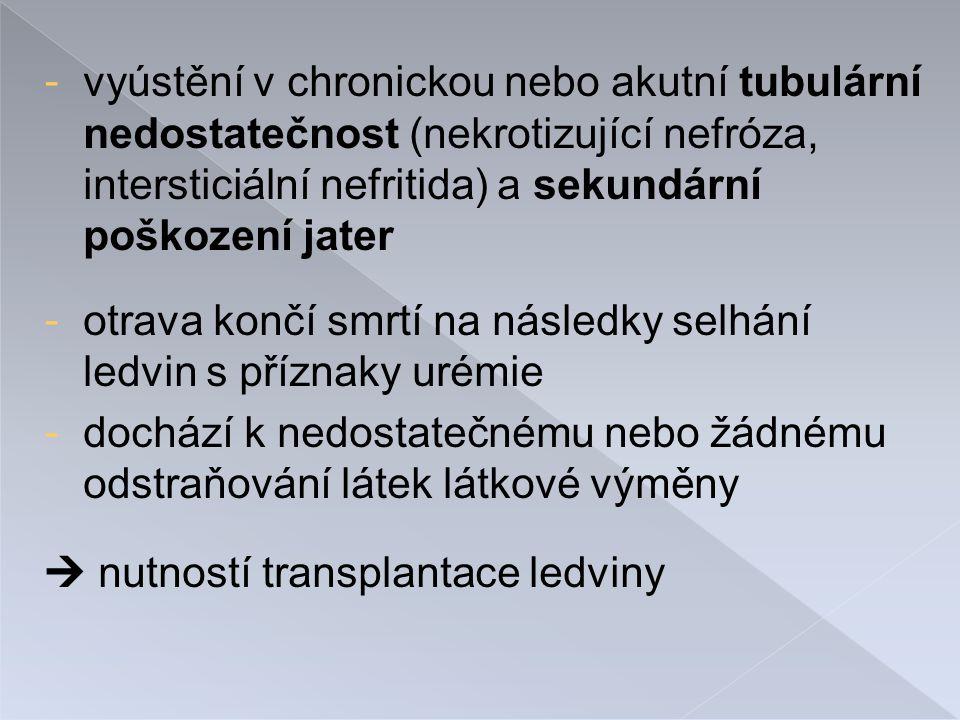 - vyústění v chronickou nebo akutní tubulární nedostatečnost (nekrotizující nefróza, intersticiální nefritida) a sekundární poškození jater - otrava končí smrtí na následky selhání ledvin s příznaky urémie - dochází k nedostatečnému nebo žádnému odstraňování látek látkové výměny  nutností transplantace ledviny