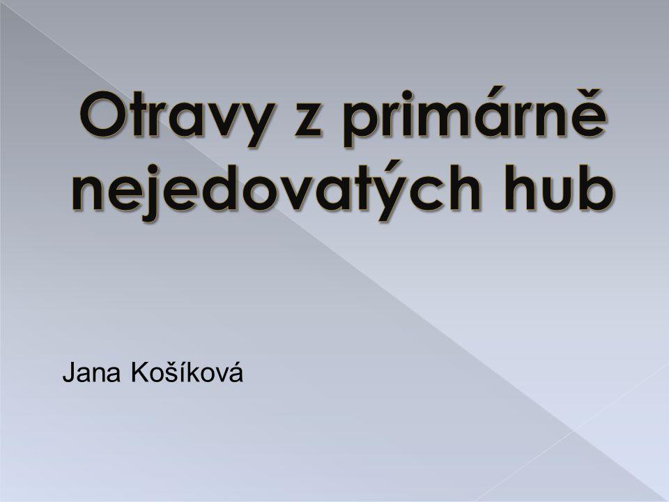 Jana Košíková