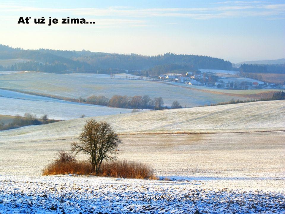 Ať už je zima...