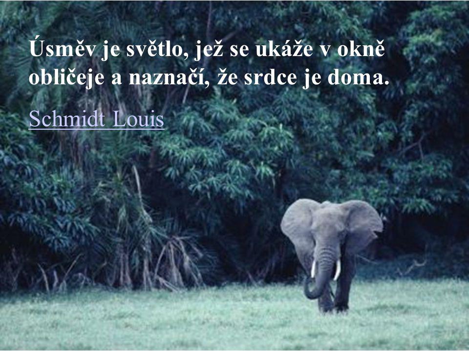 Úsměv je světlo, jež se ukáže v okně obličeje a naznačí, že srdce je doma. Schmidt Louis