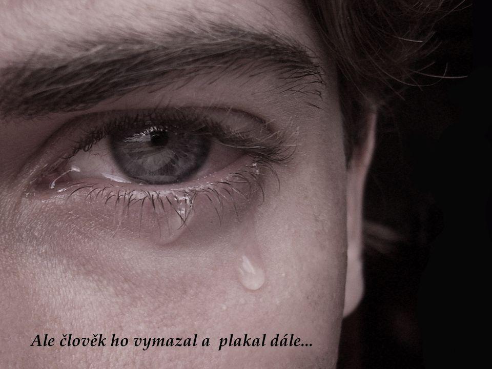 Ale člověk ho vymazal a plakal dále...