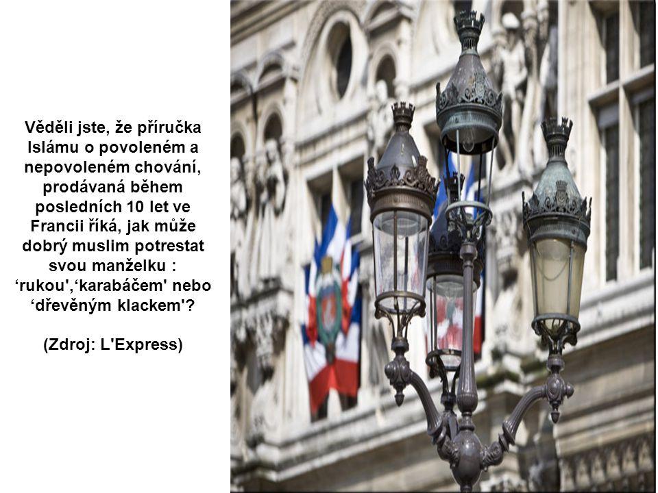 Detail mostu Alexandra III. Pa ř í ž Věděli jste, že mladí černoši a muslimové, kteří upálili bílého člena ostrahy hypermarketu v Nantes (2002) neměli