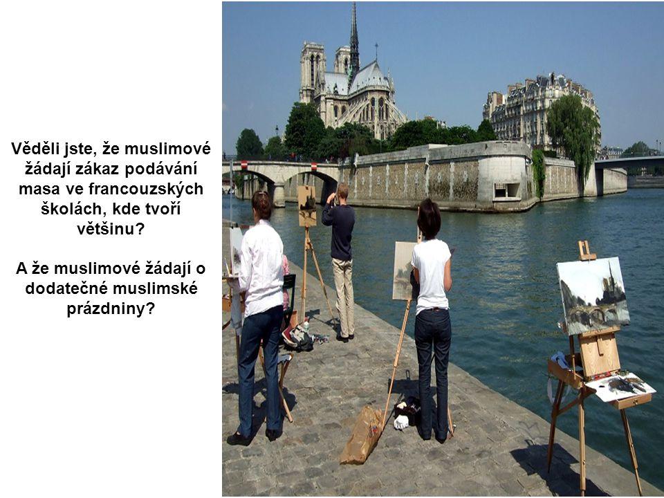 Ve ř ejná studna St.Paul, Provence NEMLČ!