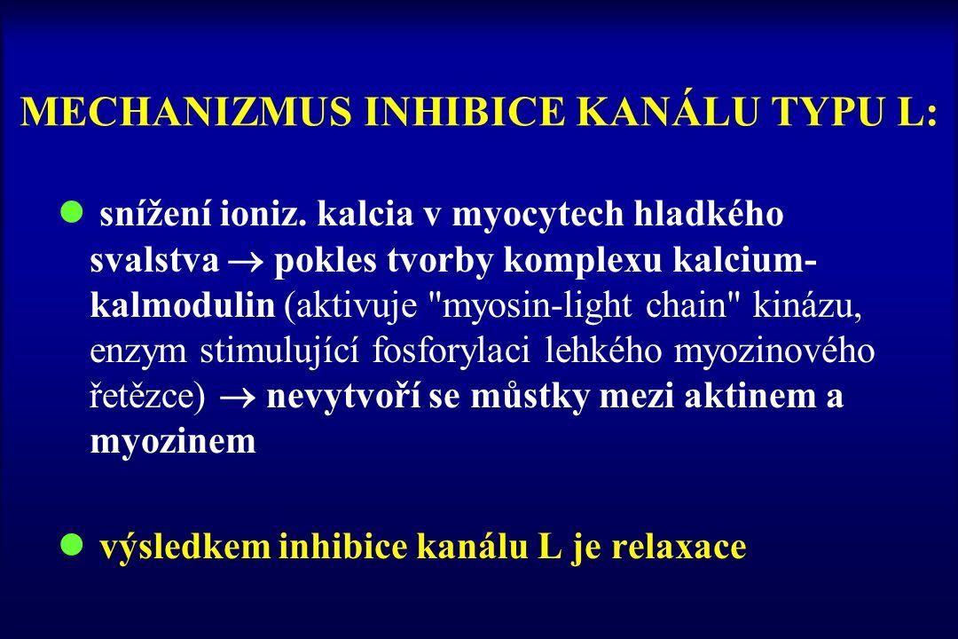 MECHANIZMUS INHIBICE KANÁLU TYPU L: l snížení ioniz. kalcia v myocytech hladkého svalstva  pokles tvorby komplexu kalcium- kalmodulin (aktivuje