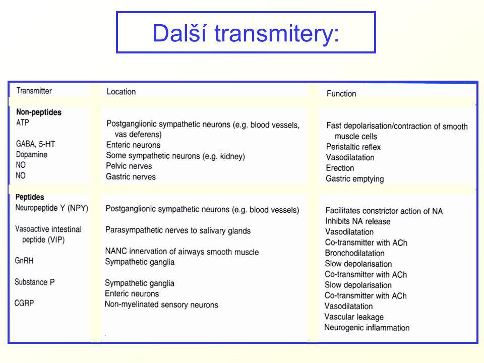 Další transmitery: