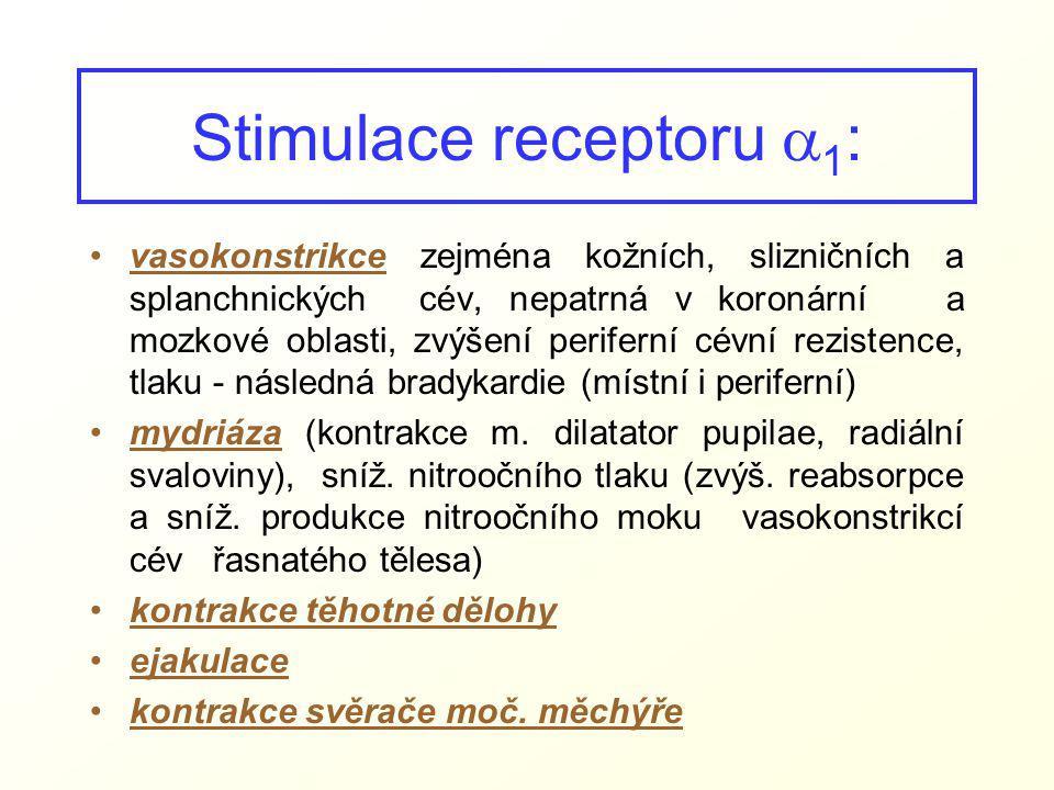 Stimulace receptoru  1 : vasokonstrikce zejména kožních, slizničních a splanchnických cév, nepatrná v koronární a mozkové oblasti, zvýšení periferní