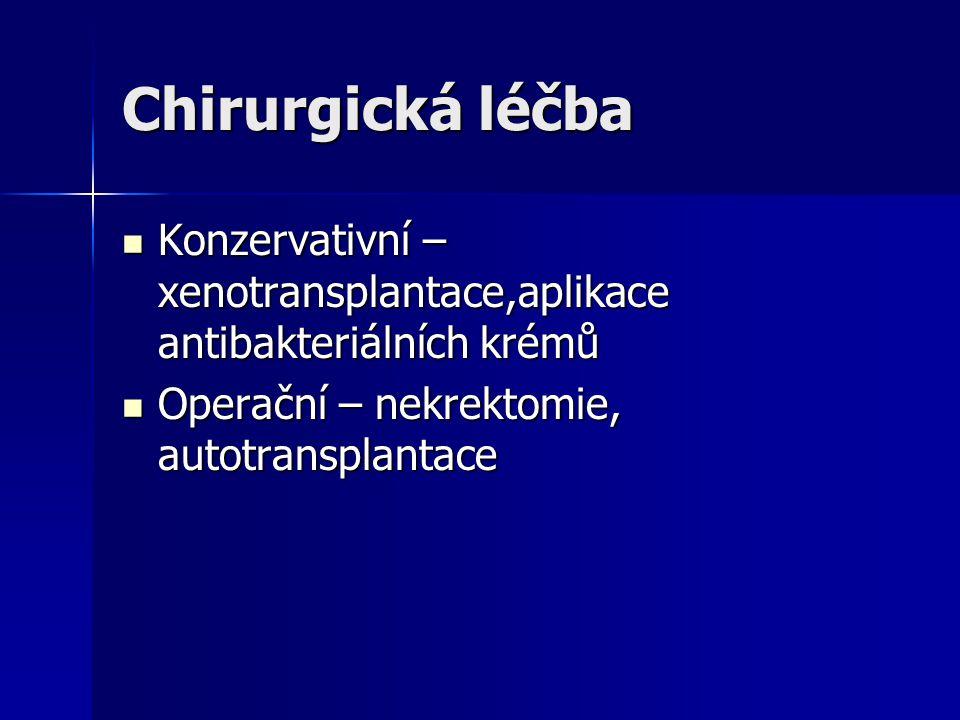 Chirurgická léčba Konzervativní – xenotransplantace,aplikace antibakteriálních krémů Konzervativní – xenotransplantace,aplikace antibakteriálních krém