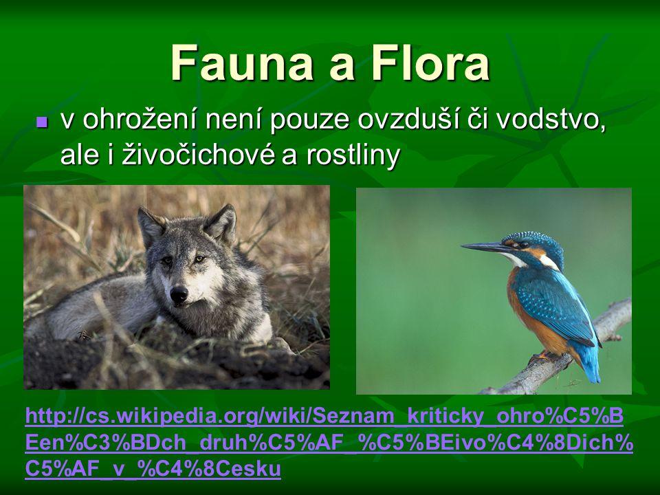Fauna a Flora v ohrožení není pouze ovzduší či vodstvo, ale i živočichové a rostliny v ohrožení není pouze ovzduší či vodstvo, ale i živočichové a rostliny http://cs.wikipedia.org/wiki/Seznam_kriticky_ohro%C5%B Een%C3%BDch_druh%C5%AF_%C5%BEivo%C4%8Dich% C5%AF_v_%C4%8Cesku