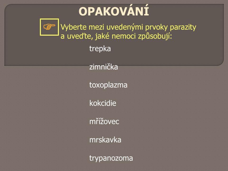 OPAKOVÁNÍ Vyberte mezi uvedenými prvoky parazity a uveďte, jaké nemoci způsobují:  trepka zimnička toxoplazma kokcidie mřížovec mrskavka trypanozoma