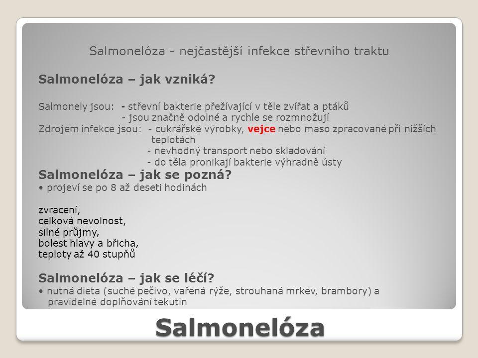 Salmonelóza Salmonelóza - nejčastější infekce střevního traktu Salmonelóza – jak vzniká? Salmonely jsou: - střevní bakterie přežívající v těle zvířat