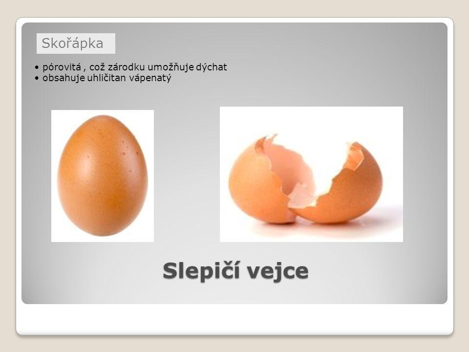 Slepičí vejce pórovitá, což zárodku umožňuje dýchat obsahuje uhličitan vápenatý Skořápka