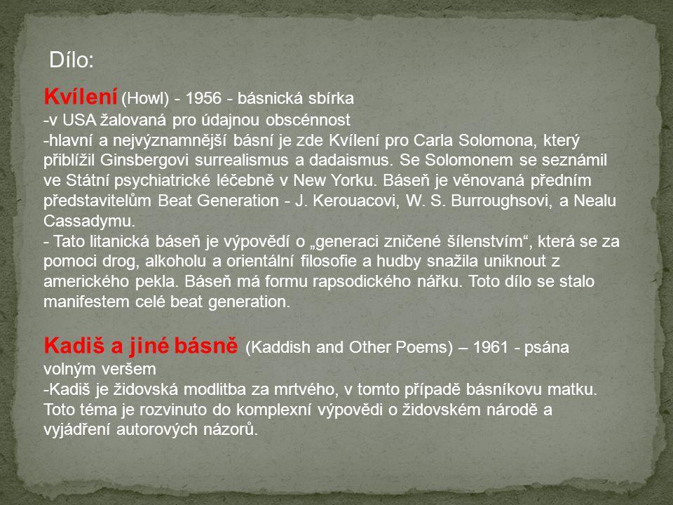 Seznam použité literatury: (1)http://cs.wikipedia.org/wiki/Beat_generationhttp://cs.wikipedia.org/wiki/Beat_generation (2)Video ukázka.