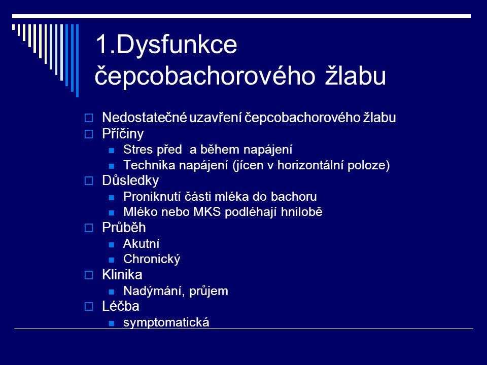 1.Dysfunkce čepcobachorového žlabu  Nedostatečné uzavření čepcobachorového žlabu  Příčiny Stres před a během napájení Technika napájení (jícen v hor