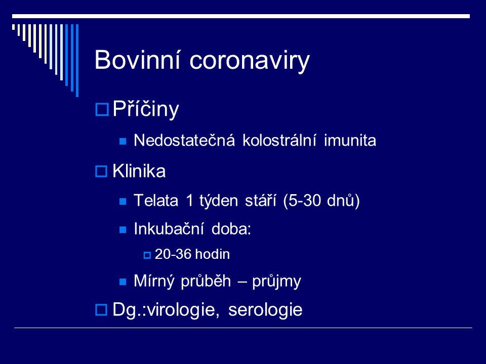 Bovinní coronaviry  Příčiny Nedostatečná kolostrální imunita  Klinika Telata 1 týden stáří (5-30 dnů) Inkubační doba:  20-36 hodin Mírný průběh – p