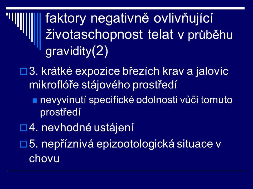 faktory negativně ovlivňující životaschopnost telat v průběhu gravidity (2)  3. krátké expozice březích krav a jalovic mikroflóře stájového prostředí